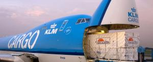Riada Shipping Logistics cargo